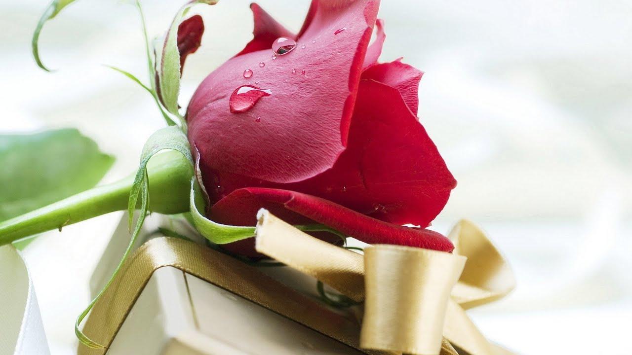 Как правильно дарить цветы? GuberniaTV