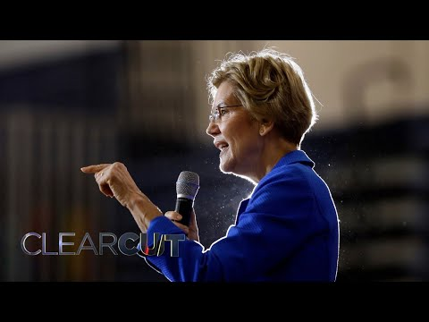 Warren Called To Revoke US Aid To Israel No Longer Even Received