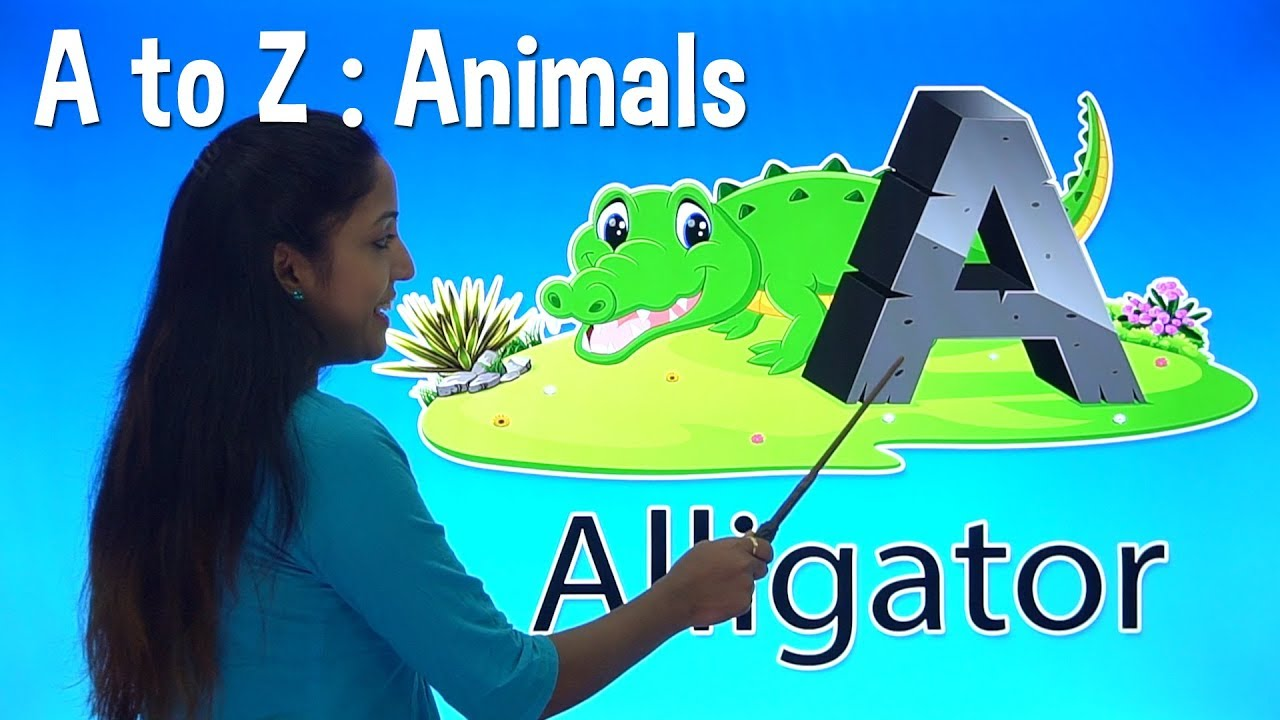 Download A to Z Animals | Learn English in Hindi | Pre School Learning Videos