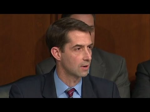 Sen. Cotton calls out Democrats for hypocrisy, talks spy movies at hearing
