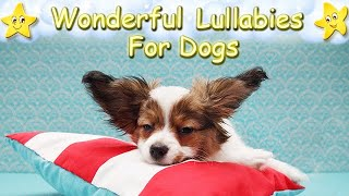 Super Relaxing Sleep Music For Papillon Dogs ♫ Calm Relax Your Puppy ♥ Lullaby For Pets Animal Music