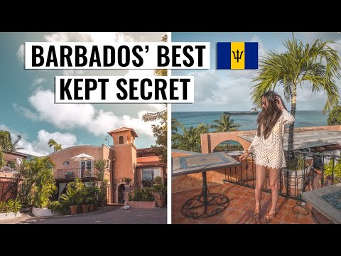 Paradise in Barbados at Little Arches Boutique Hotel | Vlog