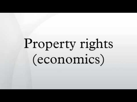 Property rights (economics)
