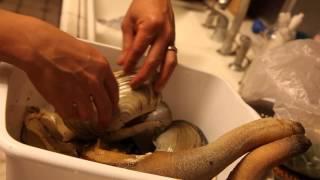 Mổ ốc vòi voi ở nhà chị Lan Bùi 10/2014