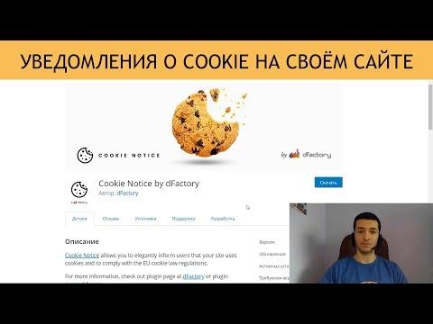 Как сделать уведомление о Cookie на своём сайте