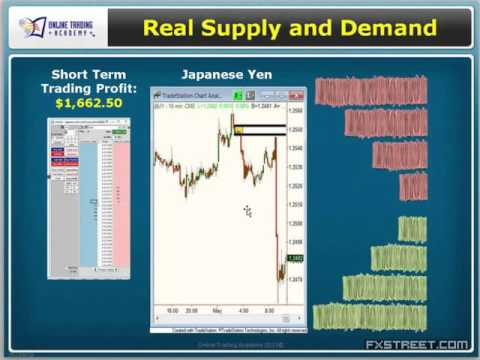 Sam Seiden: Supply/Demand Basics
