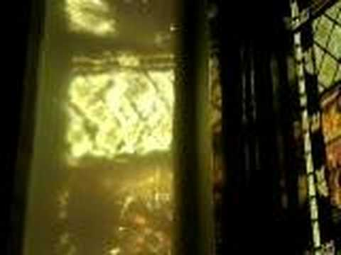 window & organ 2 of 2