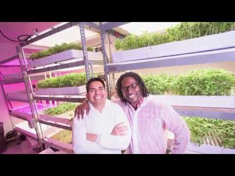 Grafted Growers, a Tucson Startup Owned by UA Alumni Entrepreneurs
