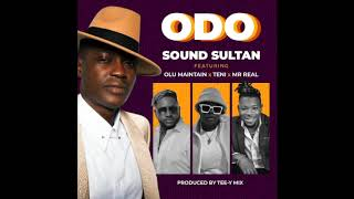 Sound Sultan ft Olu Maintain x Teni x Mr Real Official Video