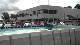 Dock-diving Weimaraner!