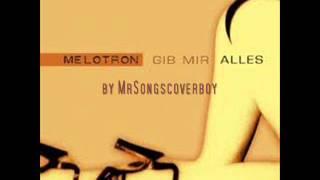 Melotron - Gib mir Alles  (Remix Cover)