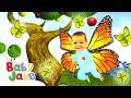 Baby Jake Flies Like A Butterfly