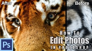 How to Use Photoshop to Edit Animals - Example: The Tigers of Ireland | Photoshop Tutorial