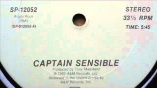 captain sensible - wot (12