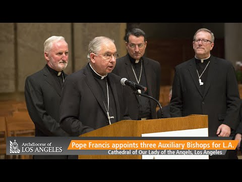 Press Conference on Newly Named Auxiliary Bishops of Los Angeles (7/21/2015)