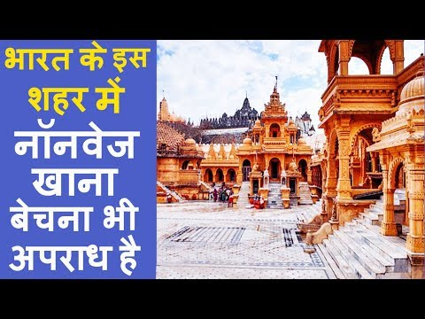 The World's First Vegetarian City | indian tourism | heritage of india