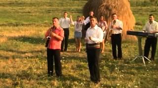 Puiu Codreanu - N-o dau pe Maria mea