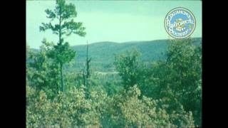 Robbers Cave State Park and Oachita National Forest Trip. 1951/11.