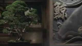 YAMA NO ANATA (2008) Theatrical Trailer