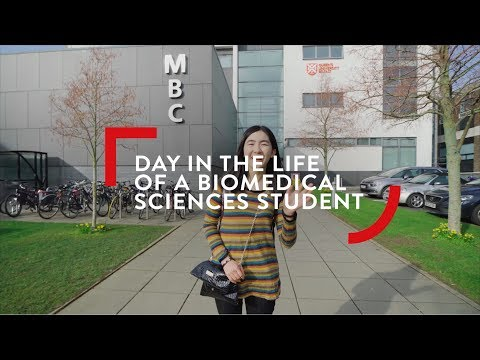 Biomedical Sciences Student - Day in the Life