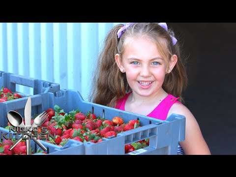 Strawberry Farming | Nicko's Kitchen