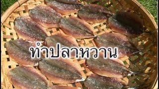 ทำปลาหวาน ทำกินเองแบบง่ายๆ บ้านๆ ตากเพียงแดดเดียว ทอดกินอร่อยมาก#ปลาหวาน