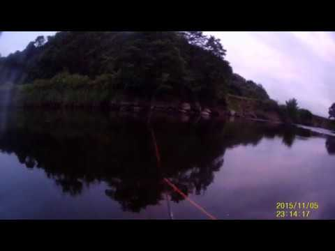 Towy Seatrout Fishing