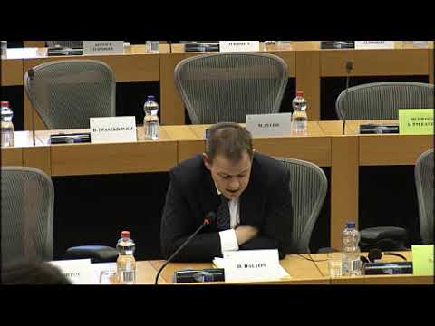 Questioning European Commission on Historic Firearms Deactivation Standards