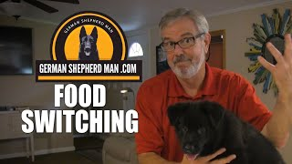 Switching food with a German Shepherd Puppy with GSM