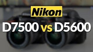 Nikon D7500 Vs Nikon D5600/d5500! Which Dslr Should You Buy?