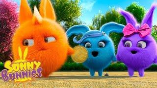SUNNY BUNNIES - СПЕЦИАЛЬНАЯ МОНЕТА | Мультфильмы для детей | WildBrain