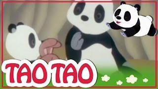 Tao Tao - 47 - האש