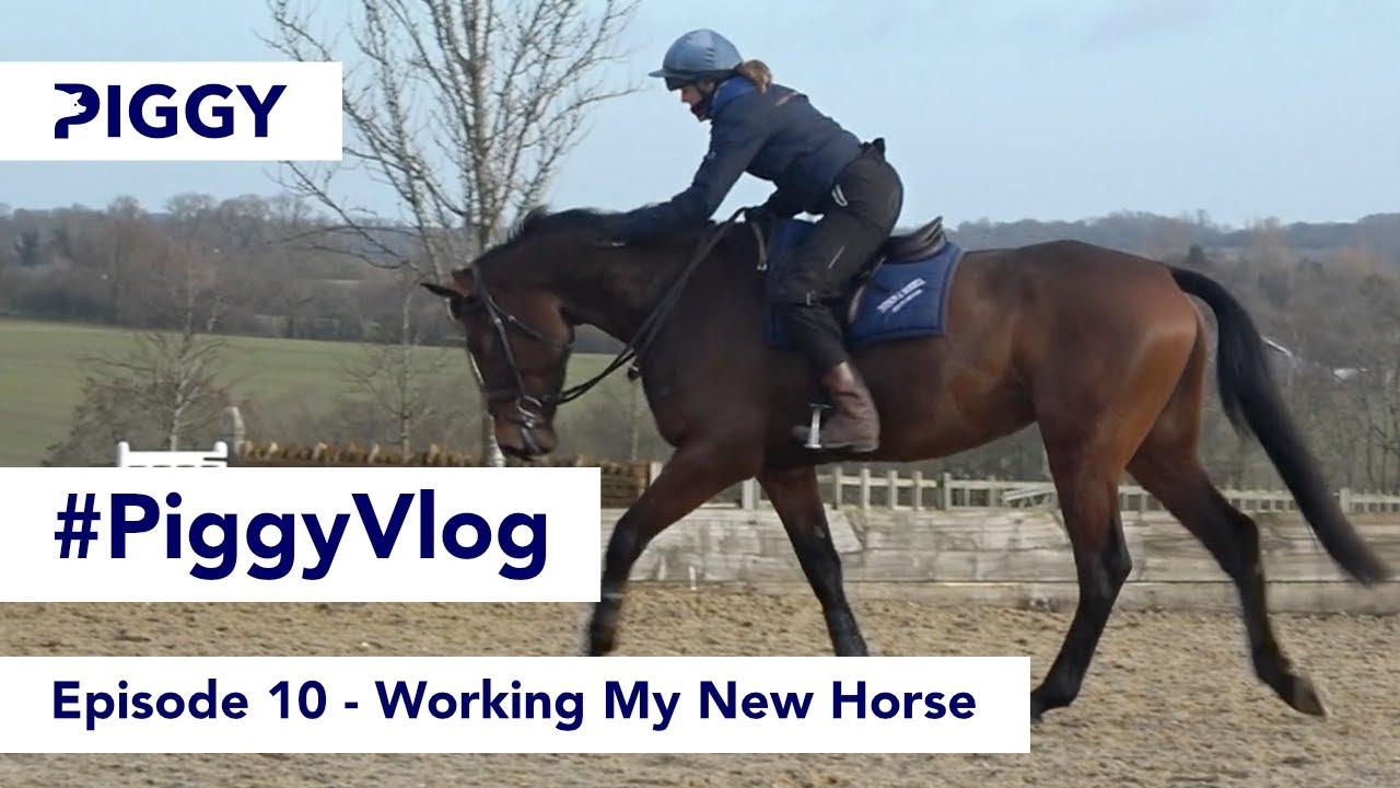 Working My New Horse   Episode 10   #PiggyVlog 2021