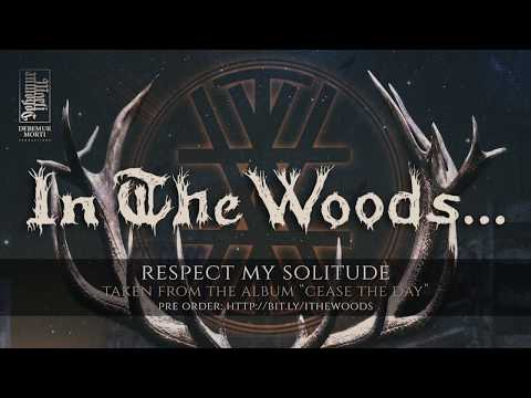 In the Woods... - Respect My Solitude Mp3