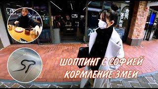 Неделя влогов/Вторник/KOREA VLOG/