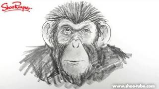 Draw Planet of the Apes