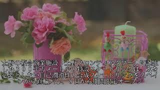 佐藤美希、シャンシャンの実物大ぬいぐるみ抱き「毛並みまでそっくり」 ...