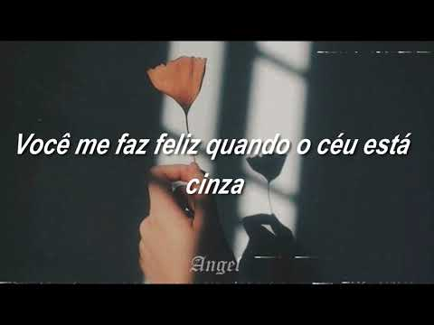 You are my sunshine //  Abbey Glover (Legendado)