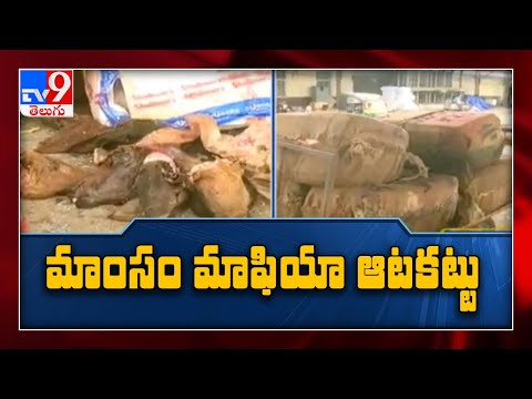 Police Seize Adulterated Mutton In Vijayawada