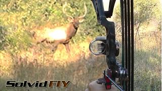 Most Insane 3 min. Archery Hunting POV Kill Shots - Viewer Discrection!