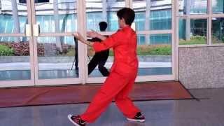 王麗華老師 太極拳36式