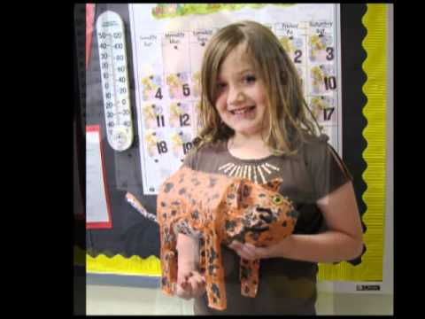 second grade animal projects youtube
