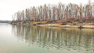 Рыбалка Поздней осенью на реке НАШЛИ ОГРОМНУЮ СТАЮ РЫБЫ SVD market освоил джиг