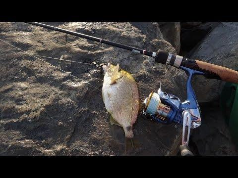 Рыбалка, Джубга, бомбарда, ласкирь 29 06 2019