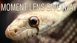 moment-lens-giveaway