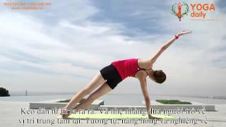 Bài Tập Yoga cơ bản cho người mới bắt đầu
