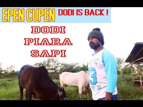 SAMPLE EPEN CUPEN Dodi is back ! : DODI PIARA SAPI (vidio.com)