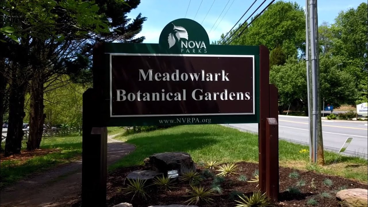 Visiting Meadowlark Botanical Gardens In Vienna, Virginia