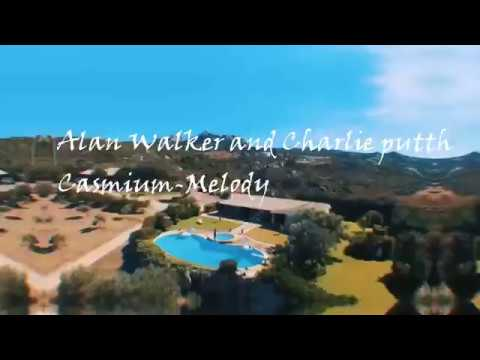 Alan Walker ft  Charlie Puth   Cadmium Melody    Lyric Video 2018