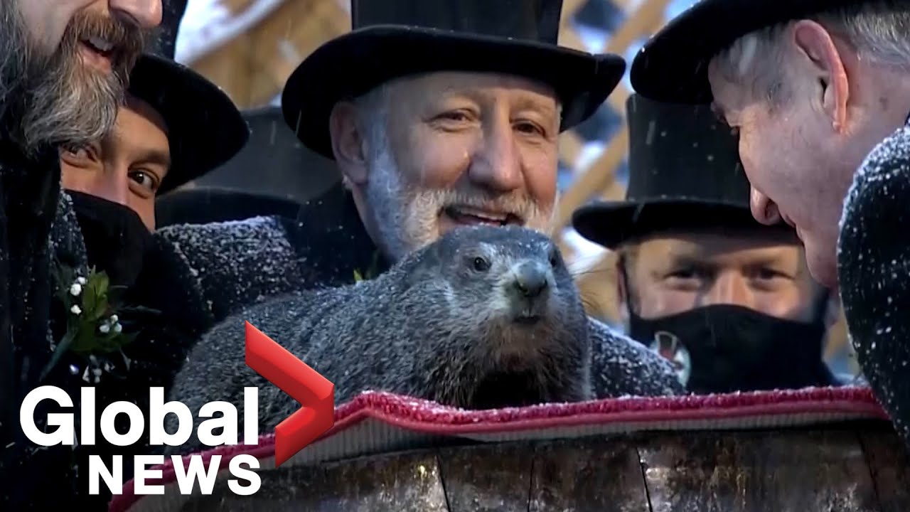 Groundhog Day 2021: Punxsutawney Phil predicts 6 more weeks of ...